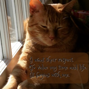 Cat respect, Respect Yourself Haiku